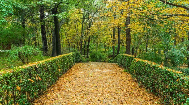 milieuvriendelijke tuinverhardingen