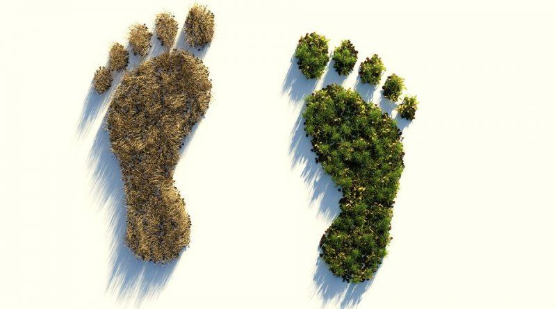 ecologische voetafdruk berekenen