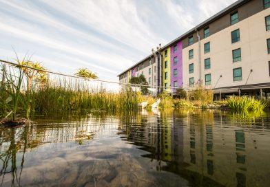 Dit is het groenste hotel van Zuid-Afrika