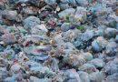 Meelwormen kunnen giftige additieven in plastics opeten en afbreken
