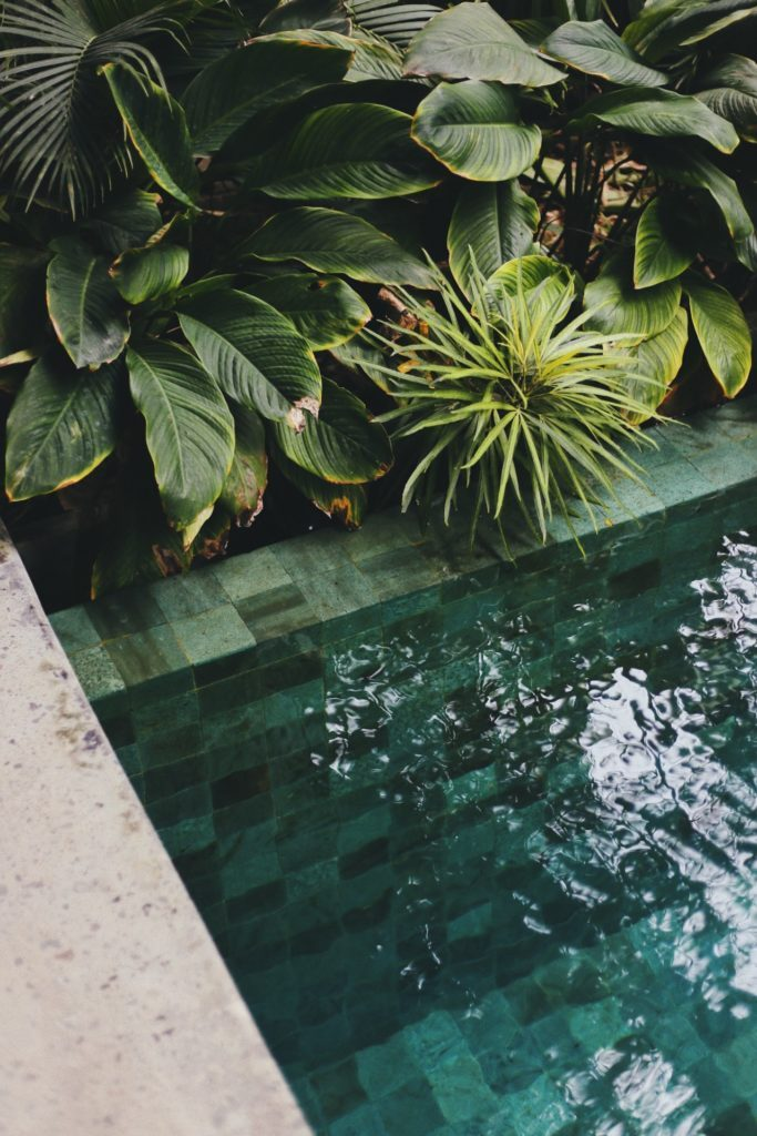 hybride zwemvijver